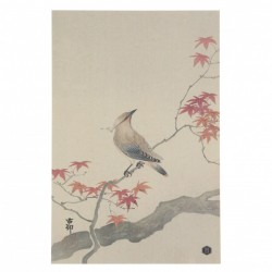 Poster multicolor din hartie 32x47 cm Waxwing Be Pure Home