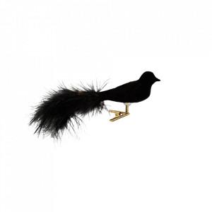 Decoratiune neagra/aurie din sticla si catifea 5x15,5 cm Velvet Bird Madam Stoltz