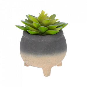 Planta artificiala cu ghiveci din ciment 14 cm Succulent La Forma