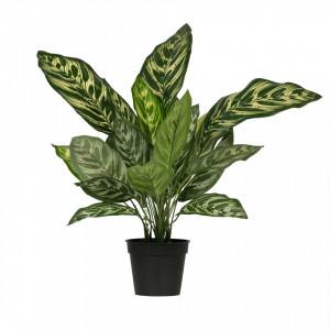 Planta artificiala verde cu ghiveci 50 cm Aglaonema Woood