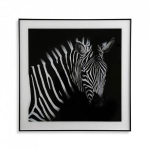 Tablou alb/negru din sticla 50x50 cm Zebra Versa Home