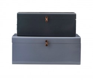 Set 2 cutii cu capac din otel Menna House Doctor