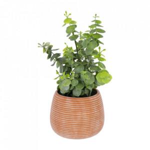 Planta artificiala cu ghiveci din ceramica 25 cm Eucalyptus La Forma