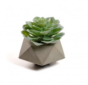 Planta artificiala cu ghiveci din ciment 13,3 cm Echeveria La Forma