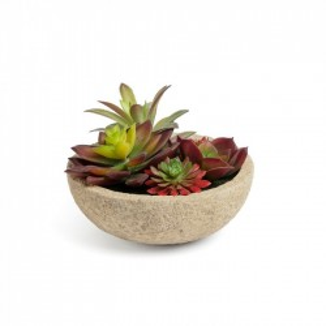 Planta artificiala cu ghiveci din ciment 13.3 cm Zelena Flower La Forma