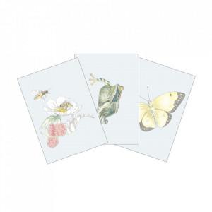 Set 3 carduri multicolore din hartie Farm Theme Cam Cam