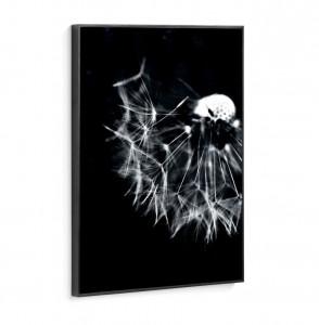Tablou negru din fibre de lemn 50x70 Dandelion La Forma