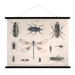 Afis din bumbac si rama din lemn Insects XL HK Living