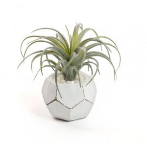 Planta artificiala cu ghiveci din sticla 13 cm Tillandsia Kave Home