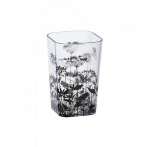 Suport transparent/negru din polistiren pentru periuta dinti 7x11 cm Botanic Wenko