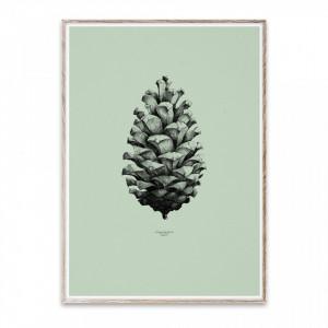 Tablou cu rama din lemn de stejar 50x70 cm Pine Cone Green Paper Collective