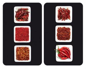 Set 2 tocatoare dreptunghiulare multicolore din sticla 30x52 Universal Chili Wenko