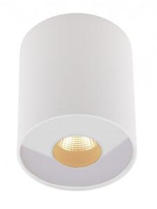 Spot LED alb din metal si sticla Plasma White Maxlight