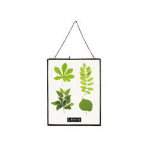 Rama foto neagra/transparenta din metal si sticla pentru perete 28x38 cm Timo LifeStyle Home Collection