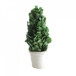 Planta artificiala cu ghiveci 19 cm Cera Creative Collection