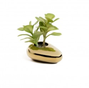 Planta artificiala cu ghiveci din ceramica 15 cm Succulent La Forma