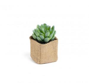 Planta artificiala cu ghiveci din textil 10 cm Pachyphytum Kave Home