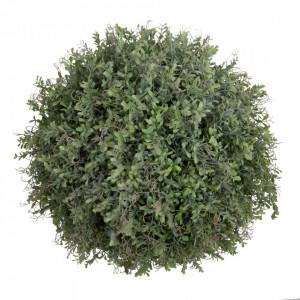 Planta artificiala din PVC 44 cm Deng Ixia