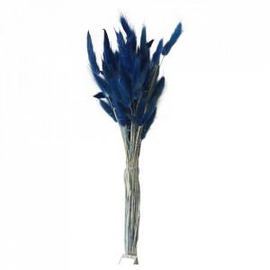 Plante ornamentale uscate albastre 60 cm Lagurus Opjet Paris