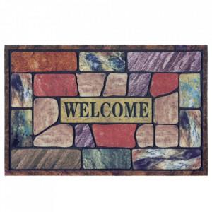 Pres multicolor dreptunghiular pentru intrare din polipropilena 45x70 cm Amina The Home