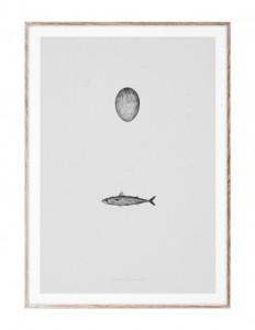 Tablou cu rama din lemn de stejar 50x70 cm Swedish Mackerel Paper Collective