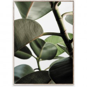 Tablou cu rama stejar Green Home 03 Paper Collective
