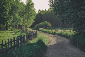 Tapet din hartie cu fibre de nailon Wooden Fence Rebel Walls