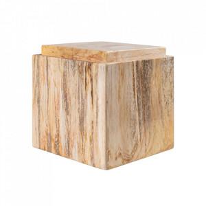 Cutie cu capac maro din lemn pietrificat Gorber Versmissen