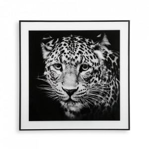 Tablou alb/negru din sticla 50x50 cm Tiger Versa Home