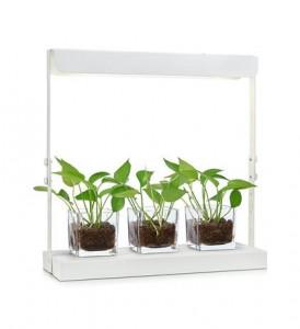 Veioza alba din metal cu LED pentru plante Harvest Markslojd