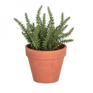 Planta artificiala cu ghiveci din polietilena 23 cm Thyme La Forma