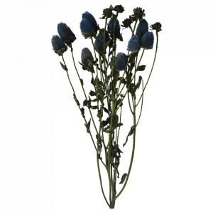 Plante ornamentale uscate albastre 65 cm Carthamus Opjet Paris