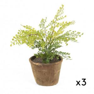 Set 3 plante artificiale cu ghiveci din teracota 32 cm Adiantum La Forma