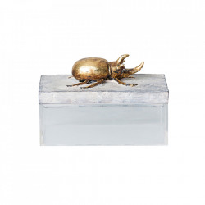 Cutie cu capac din rasina si plastic acrilic Cockroach Vical Home