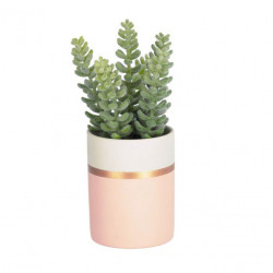 Planta artificiala cu ghiveci din polietilena si ceramica 19 cm Sedum La Forma