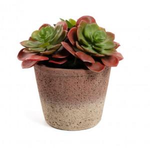 Planta artificiala cu ghiveci din sticla 16 cm Sinocrassula La Forma