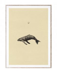 Tablou cu rama din lemn de stejar 50x70 cm Whale Original Paper Collective