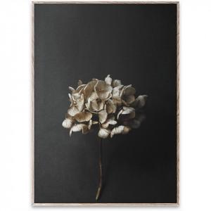Tablou cu rama stejar Still Life 04 (Hydrangea) Paper Collective