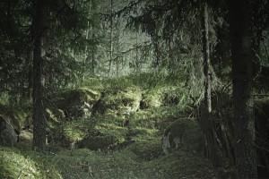 Tapet din hartie cu fibre de nailon Virgin Forest Rebel Walls