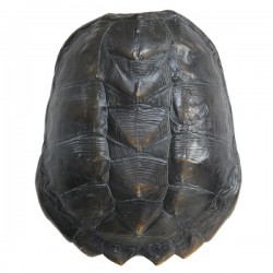 Decoratiune din polirasina neagra Turtle Shell HK Living