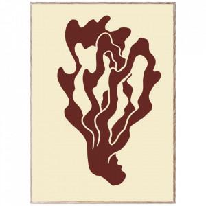 Tablou cu rama din lemn de stejar Coral 01 Paper Collective
