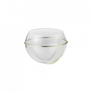 Vaza transparenta/maro alama din sticla si fier 9,5 cm pentru perete Flora Wall Bolia