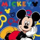 Prosopel magic Disney Mickey 30x30 cm SunCity FRA100365