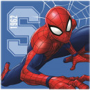 Prosopel magic Spiderman 30x30 cm SunCity CTL99422B