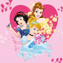 Prosopel magic Disney Princess 30x30 cm SunCity FRA100334