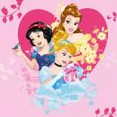 Prosopel magic Disney Princess 30x30 cm SunCity FRA100334