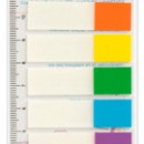 Stick index plastic transparent color 45 x 12 mm, 8 x 15 file/set, Stickn - 8 culori transp./neon""