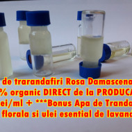 78 Lei/ml LIVRARE GRATUITA Ulei esential de trandafir Rosa Damascena Trigintipetala + bonus apa de trandafiri, apa de lavanda si mostra de ulei de lavanda