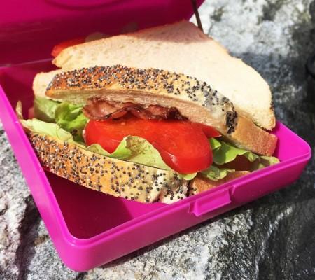 CARL OSCAR caserola sandwich gri