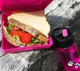 Caserola sandwich, Carl Oscar, culoarea gri